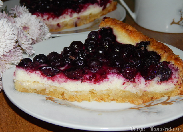 Рецепт пирога с творогом и смородиной