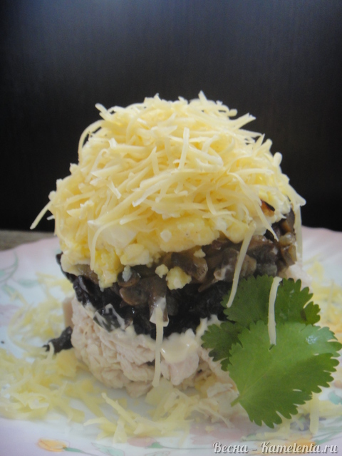 Рецепт подсолнуха салата с черносливом